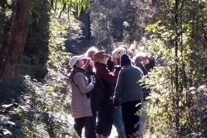 Angair Wildflower guided nature walk